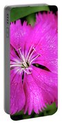 Dianthus First Love Flower Print Portable Battery Charger
