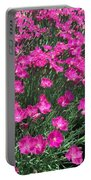 Dianthus Portable Battery Charger