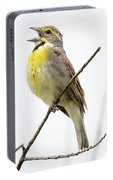 Dickcissel  Portable Battery Charger