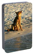Dingo On The Beach Portable Battery Charger