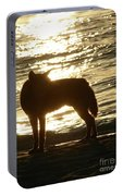 Dingo Sunset Portable Battery Charger