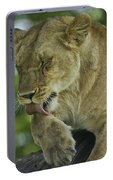 Dirty Paws Portable Battery Charger