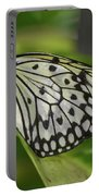 Distinctive Side Profile Of A White Tree Nymph Butterfly Portable Battery Charger