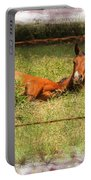 Disturbed Napping Portable Battery Charger