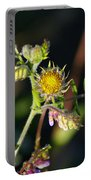 Divine Natural Creations Portable Battery Charger