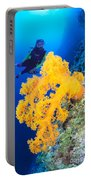 Diving, Australia Portable Battery Charger