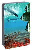 Diving Whales Portable Battery Charger