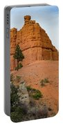 Dixie National Forest Portable Battery Charger