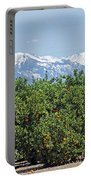 Dm6850-e Orange Grove And The Sierra Nevada Ca Portable Battery Charger