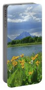 Dm9235 Mt. Moran From Oxbow Bend Portable Battery Charger