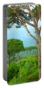 Do-00301 Pine Trees Forest In Aaraya Portable Battery Charger