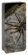 Dock Spider Portable Battery Charger