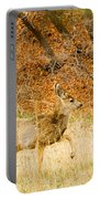 Doe High Stepping On Bald Mountain Portable Battery Charger