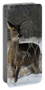 Doe In The Cove Portable Battery Charger