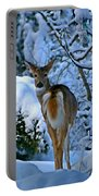 Doe In The Snow In Spokane 2 Portable Battery Charger
