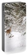 Doe In Winter Snow  Portable Battery Charger