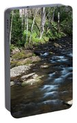 Doe River In April Portable Battery Charger