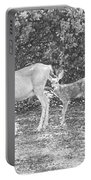 Doe With Twins Pencil Rendering Portable Battery Charger