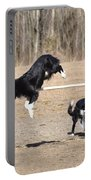 Dog 380 Portable Battery Charger