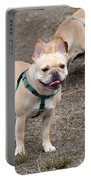 Dog 381 Portable Battery Charger