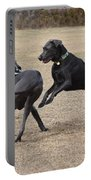 Dog 382 Portable Battery Charger