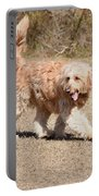Dog 385 Portable Battery Charger