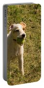 Dog And A Ball Portable Battery Charger