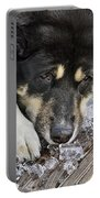 Dog Days Of Summer Portable Battery Charger