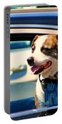 Dog In Car Portable Battery Charger