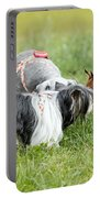Dog Meeting  Portable Battery Charger