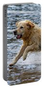 Dog Running On Shallow Lake Shore Portable Battery Charger