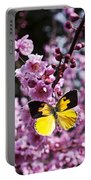 Dogface Butterfly In Plum Tree Portable Battery Charger