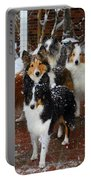 Dogs During Snowmageddon Portable Battery Charger