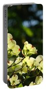 Dogwood Flowers White Dogwood Tree Flowers Art Prints Cards Baslee Troutman Portable Battery Charger