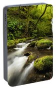 Dolgoch Falls Portable Battery Charger