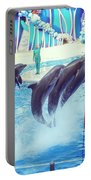 Dolphin Show Portable Battery Charger