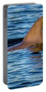 Dolphin Sighting Portable Battery Charger