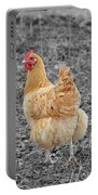 Domestic Feathered Beauty Portable Battery Charger