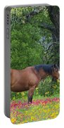 Domestic Horse In Field Of Wildflowers Portable Battery Charger