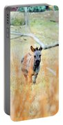 Donkey 006 Portable Battery Charger