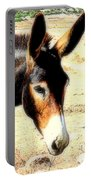 A Donkey Doesn't Need A Rider To Be Happy   Portable Battery Charger