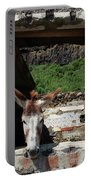 Donkey At The Window Portable Battery Charger