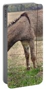 Donkey Finds Greener Grass Portable Battery Charger