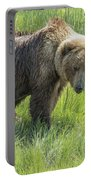 Don't Mess With Mama Bear Portable Battery Charger
