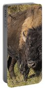 Don't Mess With This Bison Portable Battery Charger