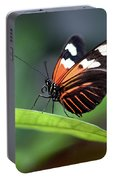 Doris Longwing Butterfly 2017 Portable Battery Charger