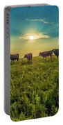 Dornodo Steppe Mongolia Portable Battery Charger