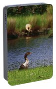 Double-crested Cormorant 2q Portable Battery Charger