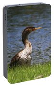 Double-crested Cormorant 4 Portable Battery Charger