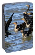Double Crested Cormorants Portable Battery Charger